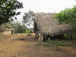 Kapawi