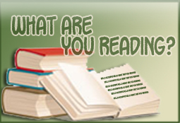 What Are You Reading? 11-28-10