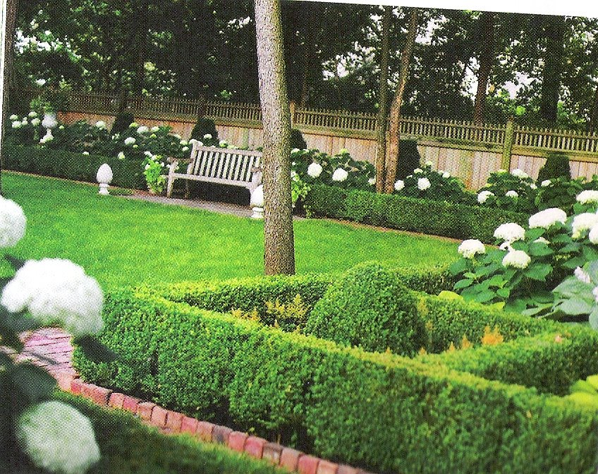[scan-boxwood]