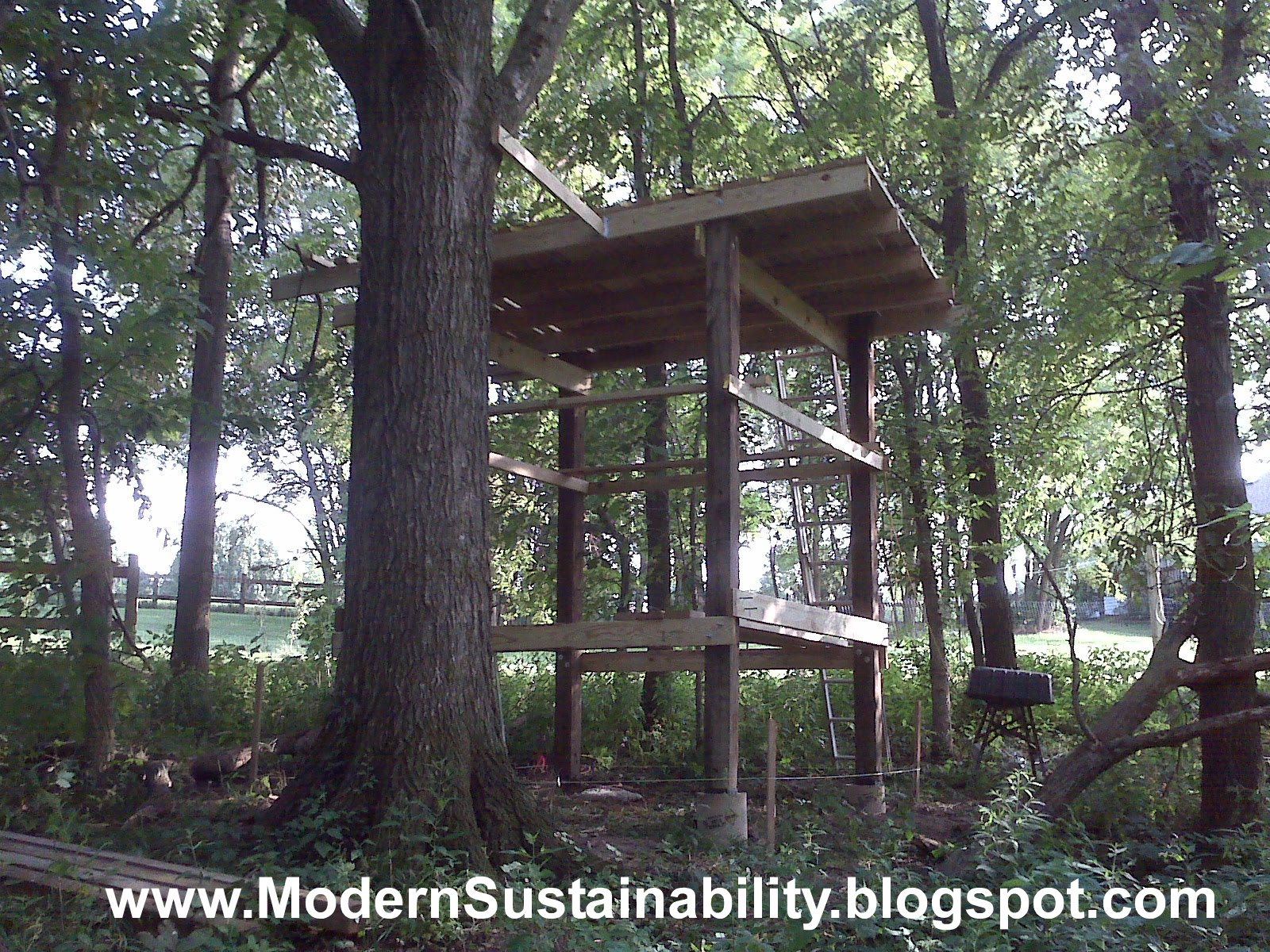 Remarkable How to Build Tree House 1600 x 1200 · 679 kB · jpeg