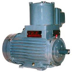 flameproof Motors and Pumps