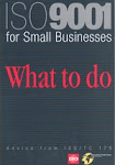 ISO 9000 for small and tiny organizations