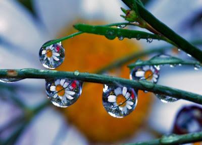 droplet pics