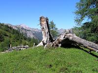 Entre la Südwienerhütte et le Wildsee