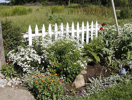 Providence north a white flower bed a white flower bed mightylinksfo
