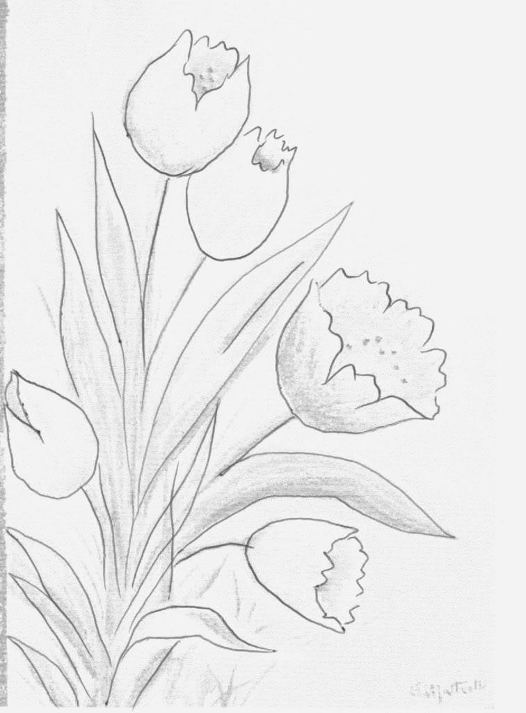 Riscos De Flores