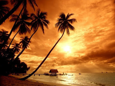 http://4.bp.blogspot.com/_ouAPN1Dbsys/SpDihAdFpSI/AAAAAAAAAMM/mCYFwCQgPN4/s400/Beach+Sunset.jpg