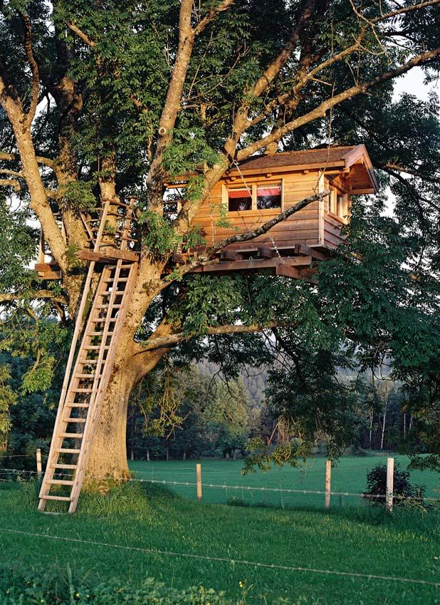 Full Movie Treehouse Full Movie