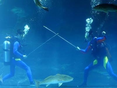 Underwater fencing