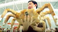 Robo Crab