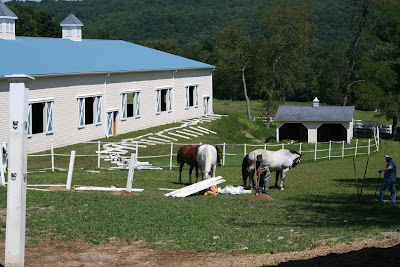MAKE A HORSE CORRAL WITH THIS SIMPLE FENCE DESIGN - MODERN