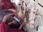 Mummified Chickens