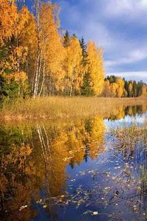 Осень в шансоне или песни про осень