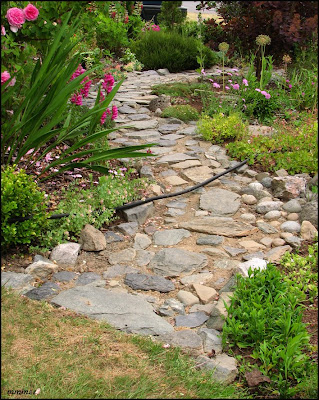 my garden garden paths 3