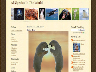 Animals Blog
