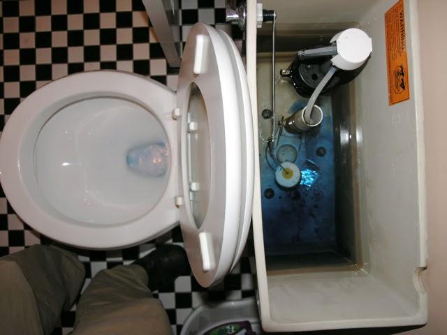 Kohler Blue Toilet