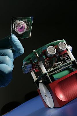 روباتی که توسط مغز موش کنترل می شود.