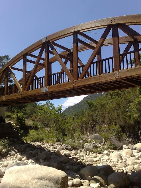 Ponte em Madeira sobre o Rio Homem
