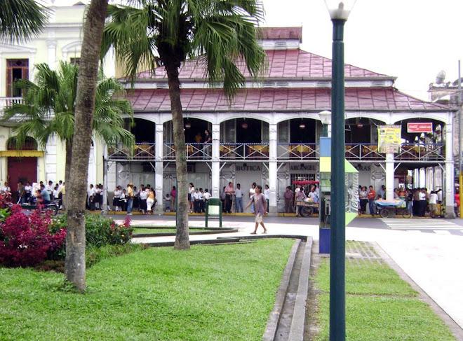 La Casa de Fierro 2008
