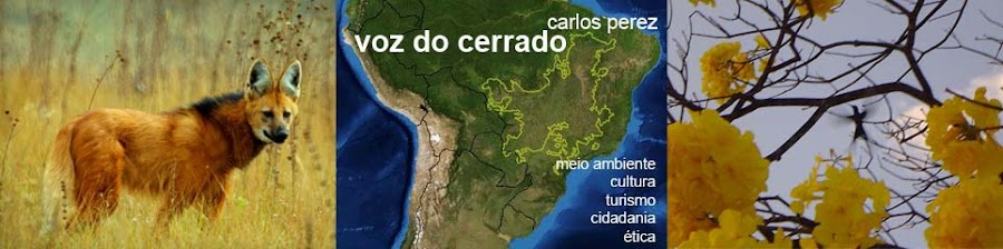 VOZ DO CERRADO Carlos Perez