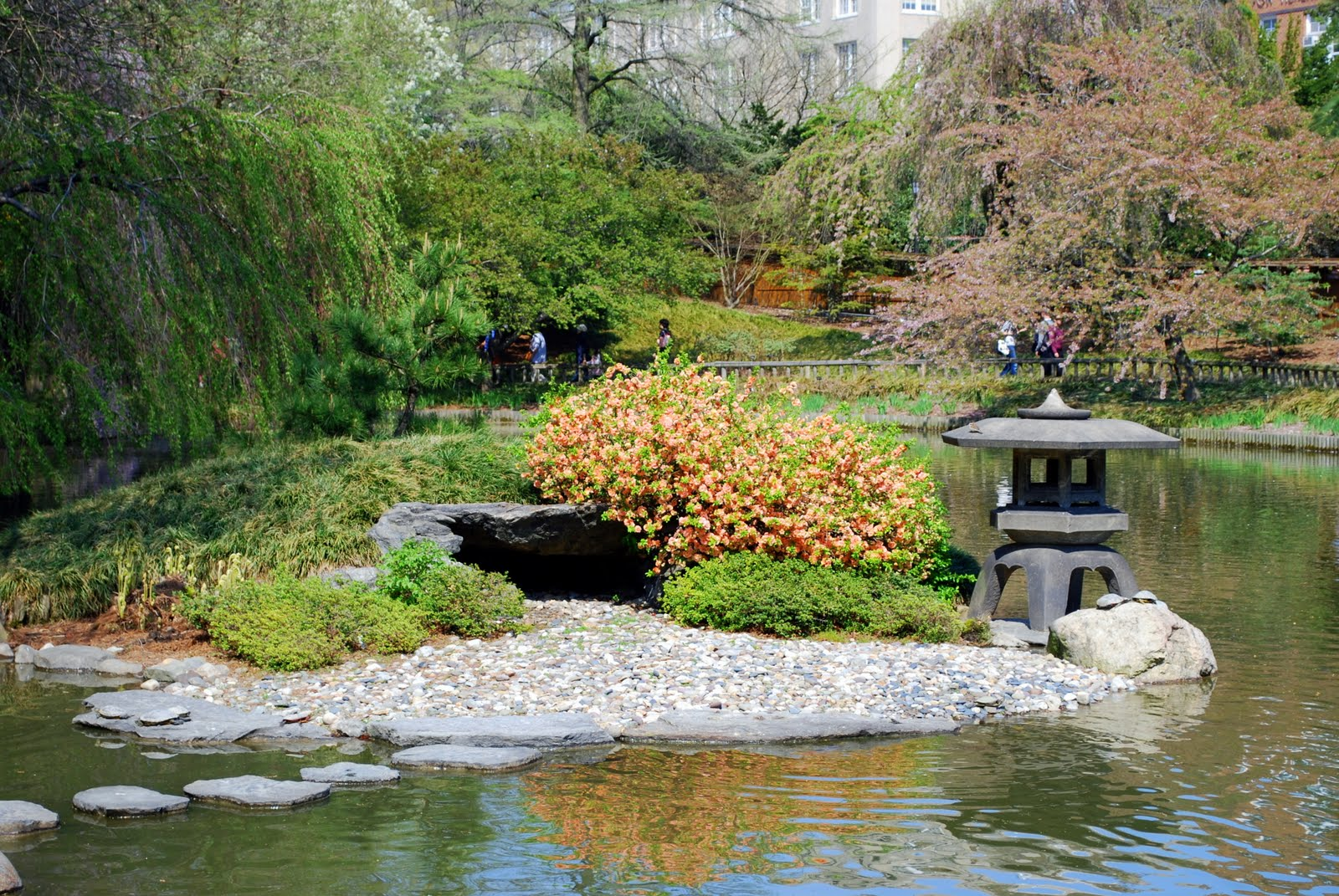 Mille fiori favoriti the brooklyn botanic japanese hill for Japanese garden pond design