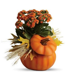 Harvest Pumpkin Halloween flower
