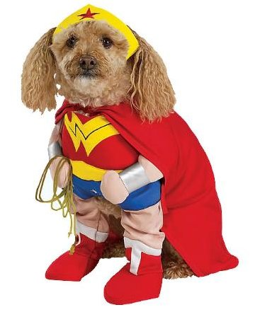 make your favorite four legged girl your favorite superhero wonder woman in this wonder woman dog costume costume includes tiara cape and front has arms