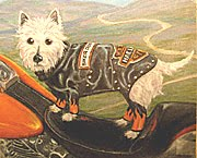 Pet Portrait Westie on Harley Davidson