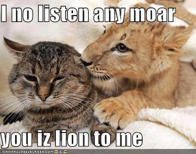 Cat Depressed After Kittens Die