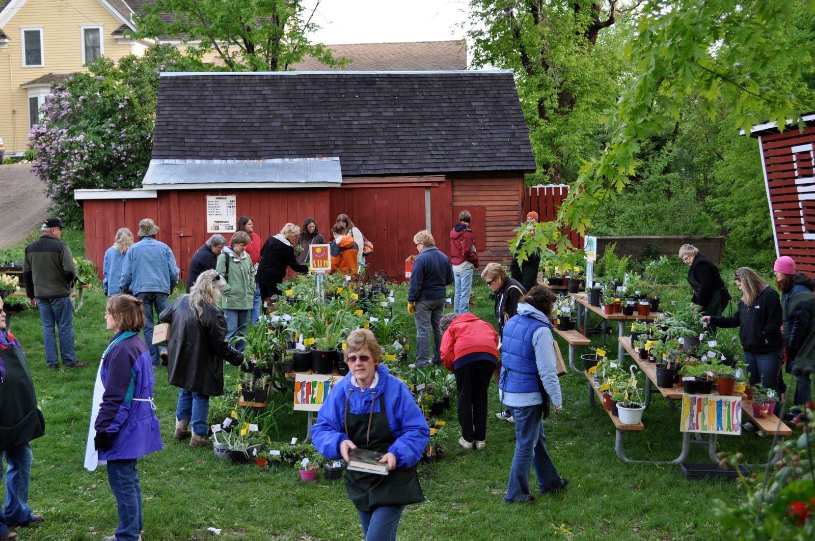 Eagan Daily Photo Eagan Garden Club Plant Sale