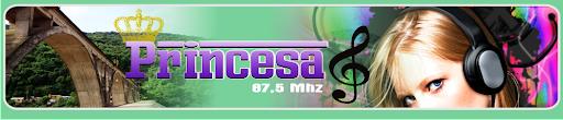 Rádio Comunitária Princesa FM - 87.5
