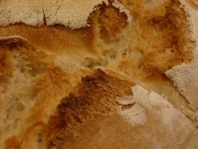 cuando era pequeño, las grietas del pan me parecían mundos fantásticos