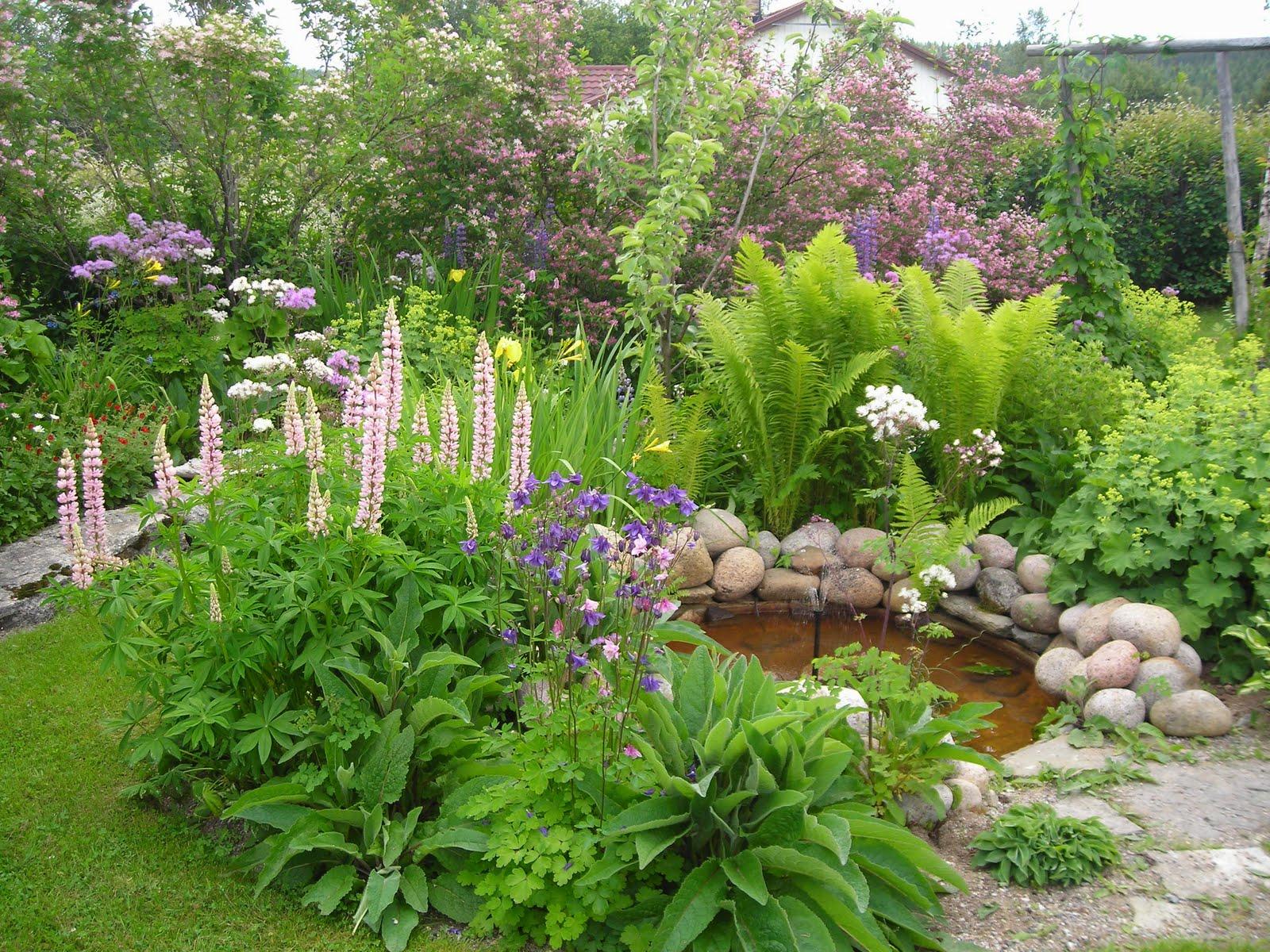 Výsledok vyhľadávania obrázkov pre dopyt obrázky na upravenu  záhradu a kvetmi