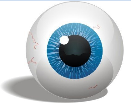 external image eyeball.png