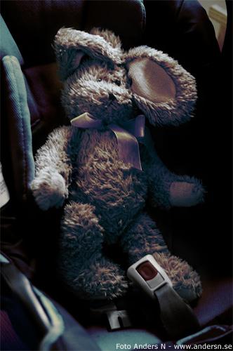 sven-erik kanin nalle teddy teddybjörn teddybear rabbit bunny stuffed animal foto anders n