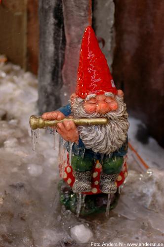 trolltyg i tomteskogen, gnomes, fryst tomte spelar flöjt, frozen gnome playing the flute, tvärflöjt, is, frusen, foto anders n