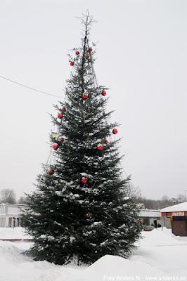 Olofström, Blekinge, snö, vinter, snow, winter, gran, julgran nya torget, armerad, nersågad, armeringsjärn, christmas tree, foto anders n