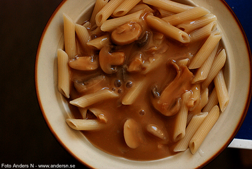 Pasta med svampsås, champinjonsås, champinjon, svamp, pasta with mushroom sauce, foto anders n