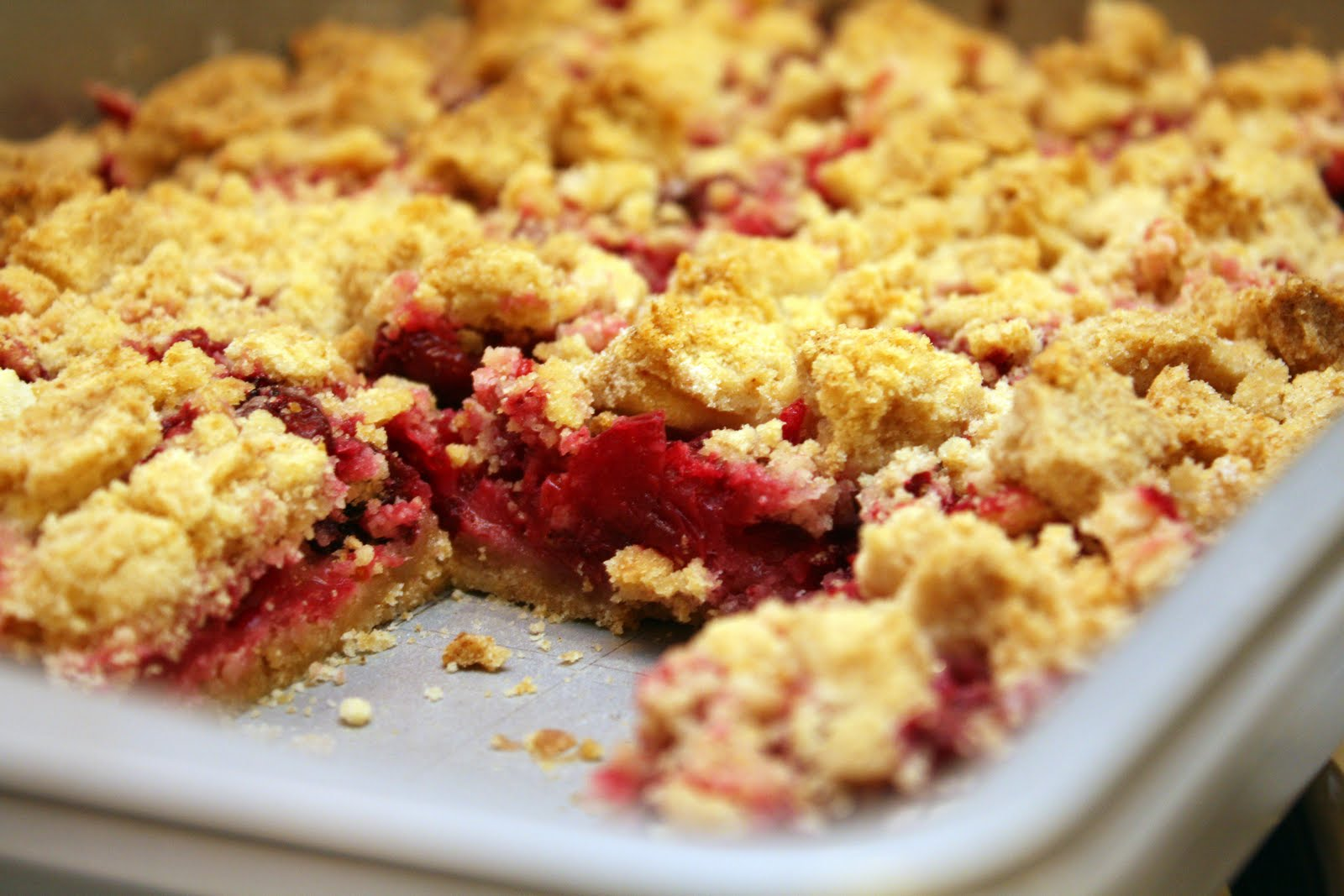 The Doctor's Dishes, Desserts & Decor: Cranberry Crumb Bars