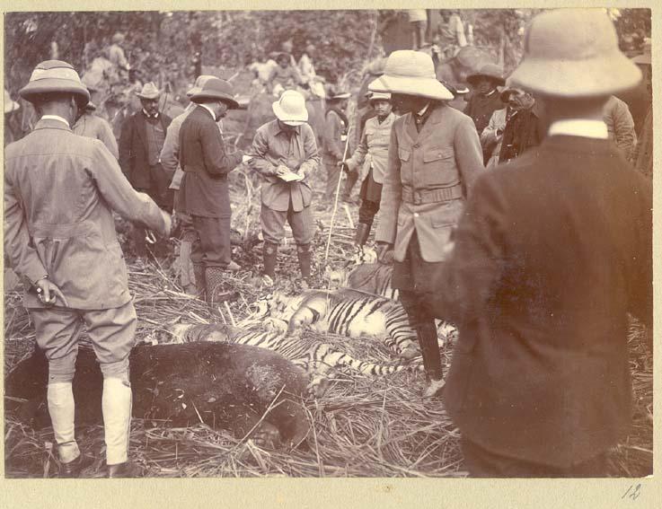 [King+George+V+Hunting+in+Nepal+in+1911+(3).jpg]