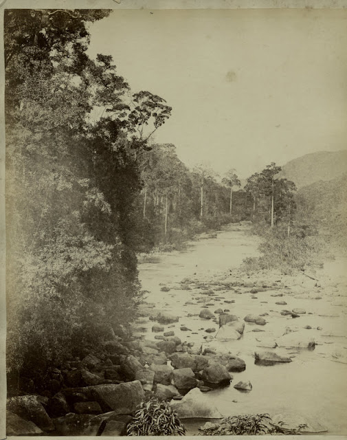 c.1890%2527s+PHOTO+INDIA+CEYLON+RIVER+TREES+AND+ROCKS