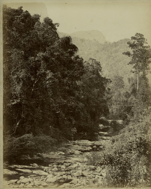 c.1890%2527s+PHOTO+INDIA+CEYLON+RIVER+VIEW