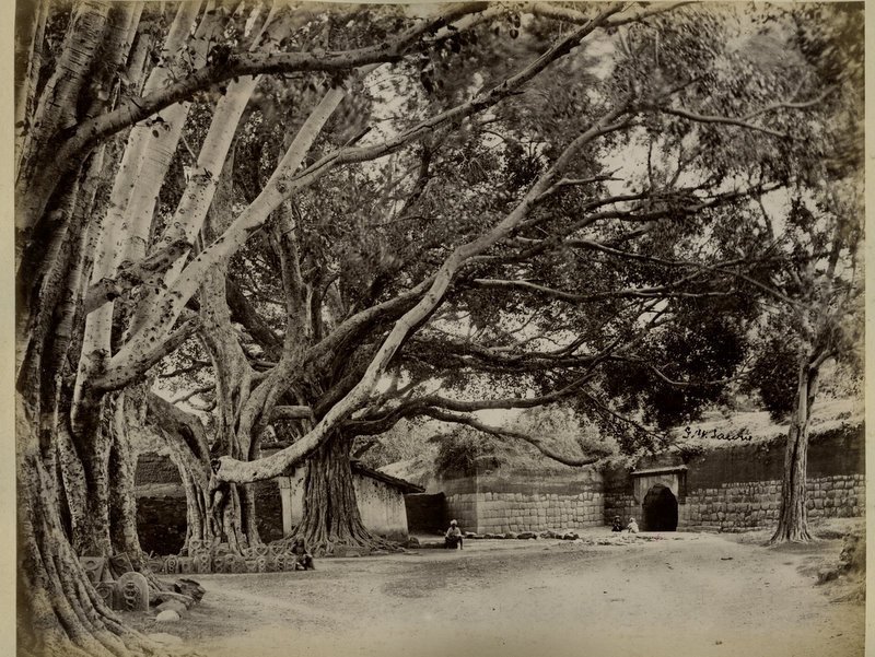 Spot Where Tipu Sultan Died (Srirangapatna, Karnataka) - 1880's