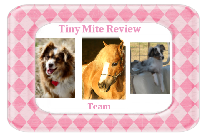 Tiny Mite Review Team