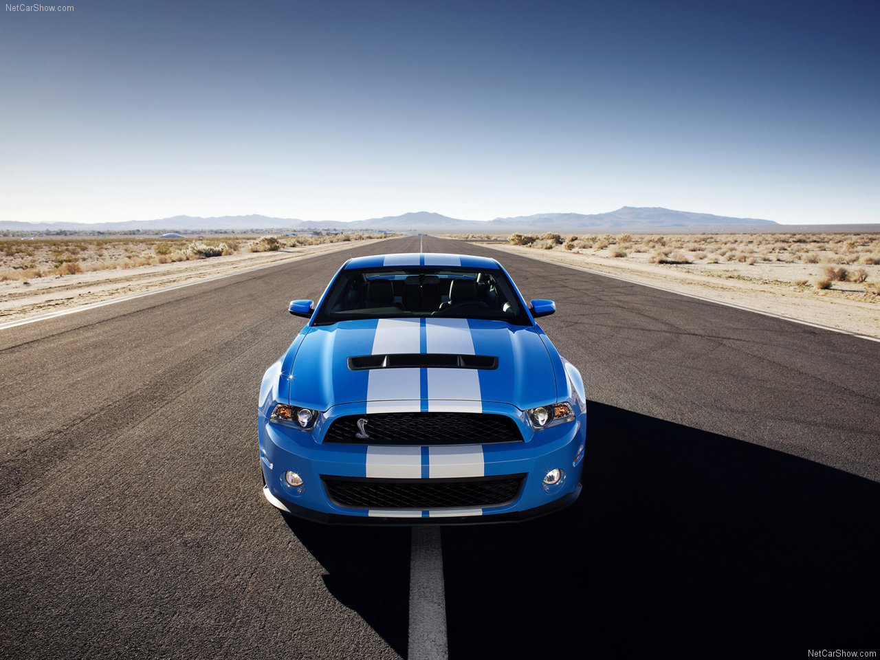 Ford mustang shelby gt500 2010 new car pictures
