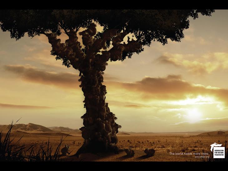 Association for Nature Preservation | All Social Ads