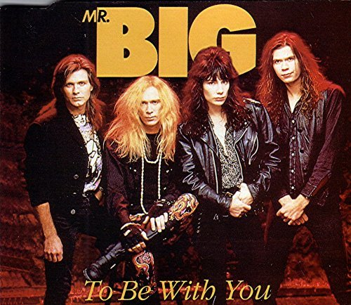 Mr Big, Band, Biografi