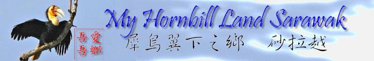 Horn Bill Land...犀鳥翼下的天空