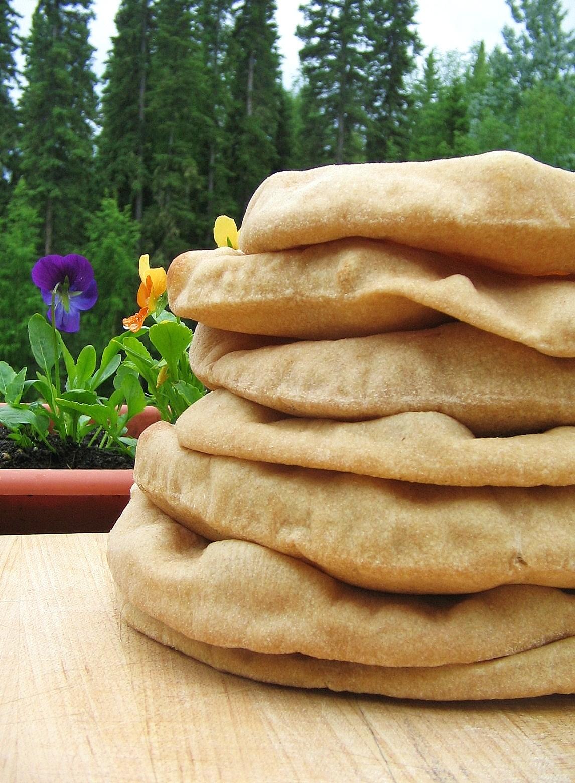 Arctic Garden Studio: Pita Bread