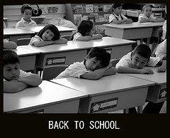 школа жизни